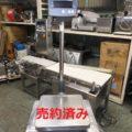 (株)寺岡精工 電気抵抗線式はかり DS-805/2012年製