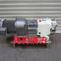 (株)ナカキン ロータリーポンプ JM25EP-C/2008年製