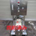 (株)ナカキン サニタリーポンプ DJ040EP-C/2007年製